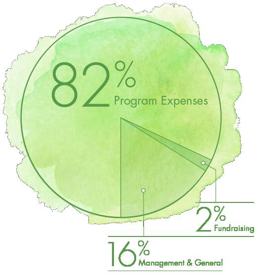 chart breaking down program expenses