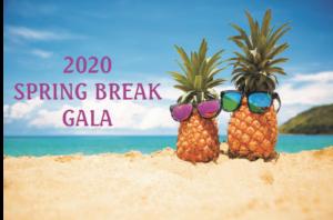Hospice of Orange and Sullivan 2020 Spring Break Gala