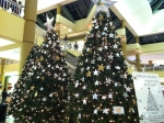 Trees of Life, Galleria at Crystal Run